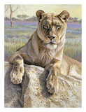 Serengeti Lioness Posters by Kalon Baughan