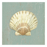 Scallop Shell Posters by Lisa Danielle