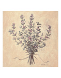 Scent of Thyme Posters by Todd Telander