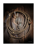 Rowels n Ropes Prints by Barry Hart