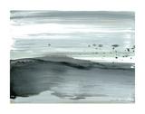 Silver Silence: Dappled Shore Kunstdrucke von Joan Davis
