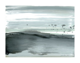 Silver Silence: Dappled Shore Prints by Joan Davis