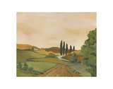 Sunny Tuscan Road Print by Jean Clark