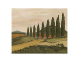 Shady Tuscan Road Prints by Jean Clark
