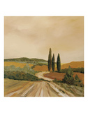 Shady Tuscan Fields Posters by Jean Clark