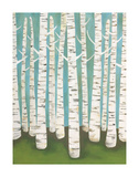Summer Birches Posters by Lisa Congdon