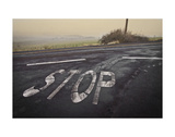Stop Landscape Prints by David Lorenz Winston