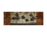 Sunlit Palms I Posters by Harold Silverman