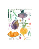 Spring Botanical Plate Posters by Lucile Prache