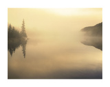 Sunrise on Fog Lake Posters by Derek Jecxz