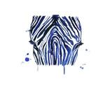 The Blue Zebra Posters af Jessica Durrant