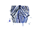 The Blue Zebra Prints by Jessica Durrant
