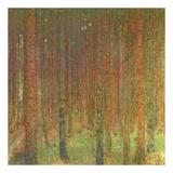Gustav Klimt - Tannenwald II Obrazy