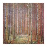 Tannenwald I Giclee Print by Gustav Klimt