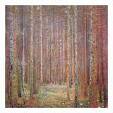 Tannenwald I Posters por Gustav Klimt