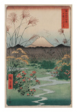 Ando Hiroshige - The Coast at Hota, from the series Thirty-six Views of Mount Fuji, 1858 Reprodukce