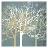 Erin Clark - Tranquil Trees Obrazy