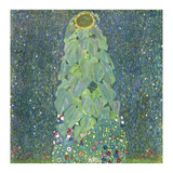 The Sunflower, c. 1906-1907 Prints by Gustav Klimt