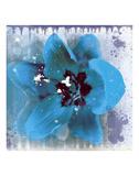 Tulip Fresco (blue) Posters by Erin Clark