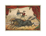 The Two Horse Act Art by  Vintage Reproduction