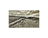 The Vintage Vanishing Point Prints by Eric Wood