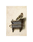The Goldfinch, 1654 Posters by Carel Fabritius