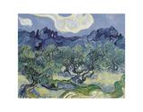 Landschaft mit Olivenbäumen, 1889 Poster von Vincent van Gogh