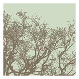 Winter Tree II Poster by Erin Clark