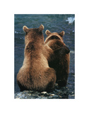 Two Bear Cubs Print by Art Wolfe