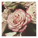Vintage Rose Print by Elizabeth Hellman