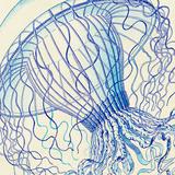Vintage Jellyfish II Poster by  Sparx Studio