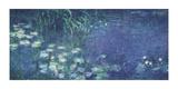 Water Lilies: Morning Lámina giclée por Claude Monet