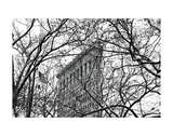 Veiled Flatiron Building (b/w) Print by Erin Clark