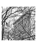 Veiled Flatiron Building (b/w) (detail) Prints by Erin Clark