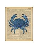 Vintage Crab Posters by  Sparx Studio