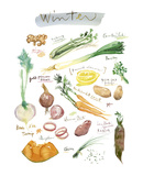 Winter Vegetables Art by Lucile Prache