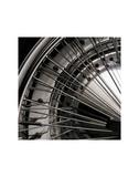 Wheel Art by Michael Furman