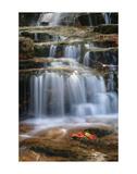Waterfall Whitecap Stream Poster by Michael Hudson