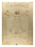 Vitruvian Man Posters by Leonardo Da Vinci