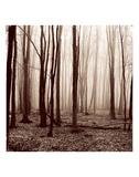 Winter Woods Posters af Erin Clark