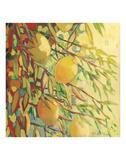 Four Lemons Print by Jennifer Lommers