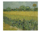 Field with Flowers Near Arles, 1888 Poster by Vincent van Gogh