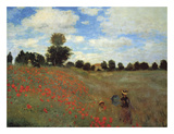 Wild Poppies Prints by Claude Monet