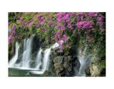 Floral Falls Prints by Dennis Frates