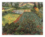 Field of Poppies, Saint-Remy, c. 1889 Prints by Vincent van Gogh