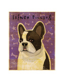 French Bulldog (White Brindle) Posters by John W. Golden