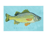 White Perch Print by John W. Golden