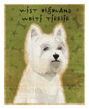 West Highland White Terrier Prints by John W. Golden