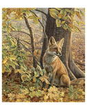 Eyes of Autumn Print by Kalon Baughan