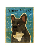French Bulldog (Black and White) Art by John W. Golden